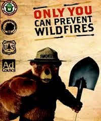 Only You Can Prevent Forest Fires Meme - only you can prevent forest fires album on imgur
