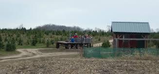 piney acres christmas tree farm is a beautiful family adventure
