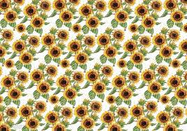 sunflower wrapping paper sunflower trio words and watercolors