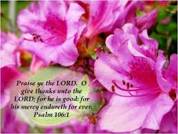 139 best psalms praise images on bible scriptures
