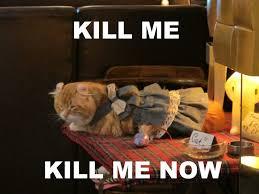 Kill Me Meme - image 509648 kill me know your meme