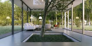 le anh white living with indoor tree feature interior design ideas