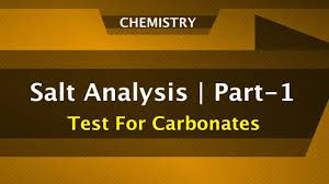 salt analysis part 1 anion test for carbonates chemistry