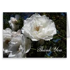 funeral thank you cards easy funeral thank you notes written from the heart
