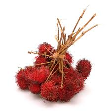 lychee fruit inside rambutan wikipedia