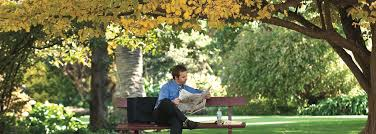 Geelong Botanic Gardens by Albury Botanic Gardens Drive From Sydney To Melbourne Coastal