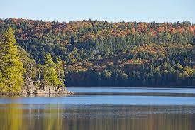 Algonquin Park Interior Camping Welcome To Algonquin Provincial Park