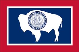 3 X 5 Flags Wyoming State Flag Liberty Flag U0026 Banner Inc