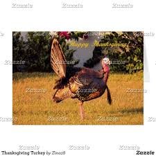 312 best thanksgiving cards images on
