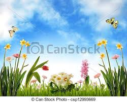 stock illustration of garden scenery spring flowers grass and