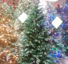 artificial trees denver co photo album ideas