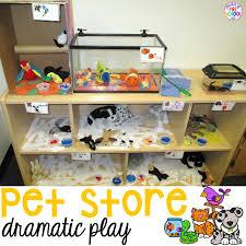 pet room ideas pet store dramatic play pocket of preschool