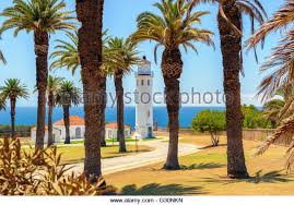 lighthouse trees stock photos lighthouse trees stock images alamy