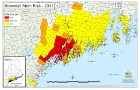Map Maine Need To Know Browntail Moth Itch Kennebec Pharmacy U0026 Home Care