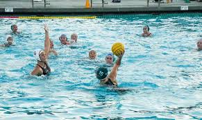 chs polo chs water polo plays two this week one win one
