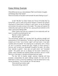 Mla Format Essay Writing Argumentative Essay Example Simple