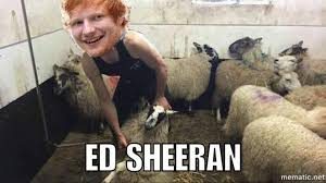 Ed Meme - dank meme report ed sheeran meme collection steemit