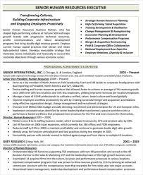 free executive resume executive resume template free resume sle