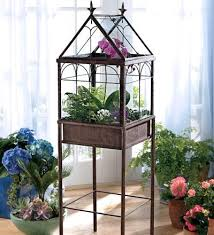 large indoor terrarium better housekeeper blog all things cleaning