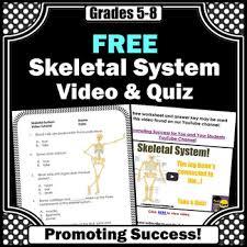 free download skeletal system worksheet skeletal system activity