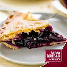 blueberry pie alton brown style or my listen to the mrs