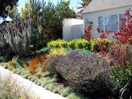 Landscape Ideas For Small Backyard by Traditional Home Design With Small Backyard Using Chic Drought