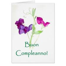 italian birthday greetings in italian greeting cards zazzle