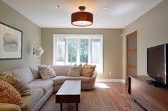 Narrow Living Room Design Ideas Most Visited Inspirations In The 13 Alluring Savvy Narrow Living