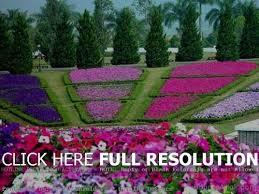 flower garden designs and layouts t8ls com