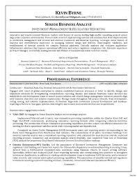 sle resume for business analyst fresher resume document margins cosy healthcare it analyst resume on sle business ba senior