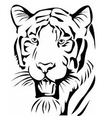 pictures simple image of tiger drawing art gallery