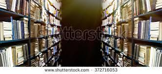 Bookshelves Library Bookshelf Library Many Books Stock Photo 71356744 Shutterstock