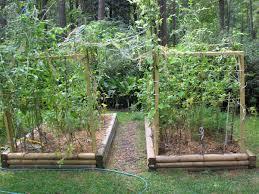 fresh ideas raised bed vegetable garden design vegetable garden