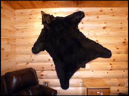 Hanging Rugs On A Wall Hanging A Bearskin Rug