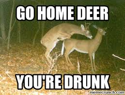Deer Hunting Memes - beautiful deer hunting memes kayak wallpaper