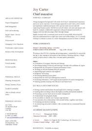Chief Marketing Officer Resume Executive Resume Cfo Resume Example P1 Executive Resume Examples