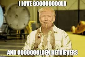 Goldmember Meme - gold member trump latest memes imgflip