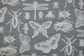 Tapestry Upholstery Fabric Australia Marson Bichos Butterfly Insect Filigree Grey Cotton Curtain