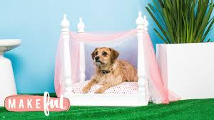 Dog Bed With Canopy Diy Princess Canopy Pet Bed Pet Projects Youtube