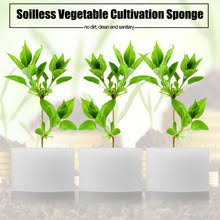 compare prices on hydroponics vegetable garden online shopping