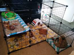 Diy Indoor Rabbit Hutch Need Some Ideas Or Inspiration For Building Your Own Indoor Rabbit
