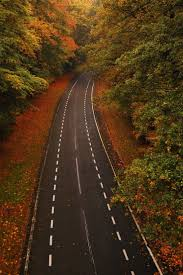 159 best road images on pinterest road trips winding road and