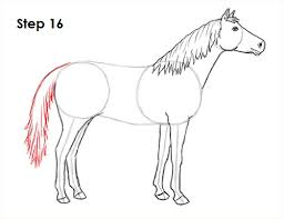 coloring pretty draw horse 16 coloring