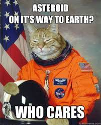 Sleepy Kitty Meme - sleepy kitty memes quickmeme