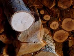 what is the best wood to use for cabinet doors the best firewood for burning hgtv