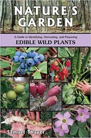 nature u0027s garden a guide to identifying harvesting and preparing