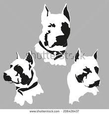 american eskimo dog vector stock images similar to id 19793860 dog vector
