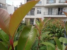 terrasses et jardin vente appartement duplex 7p à la garenne colombes avec duplex avec