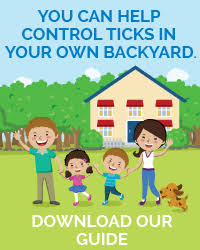 Ticks In Backyard Tick Control Services In Mercer Ocean Monmouth Middlesex County Nj