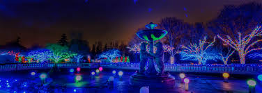 Lights At The Zoo by Adcraft Metro Detroit Living Homepage